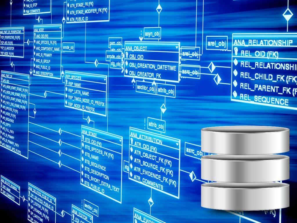 datlas_mx_blog_diagnostico_database2